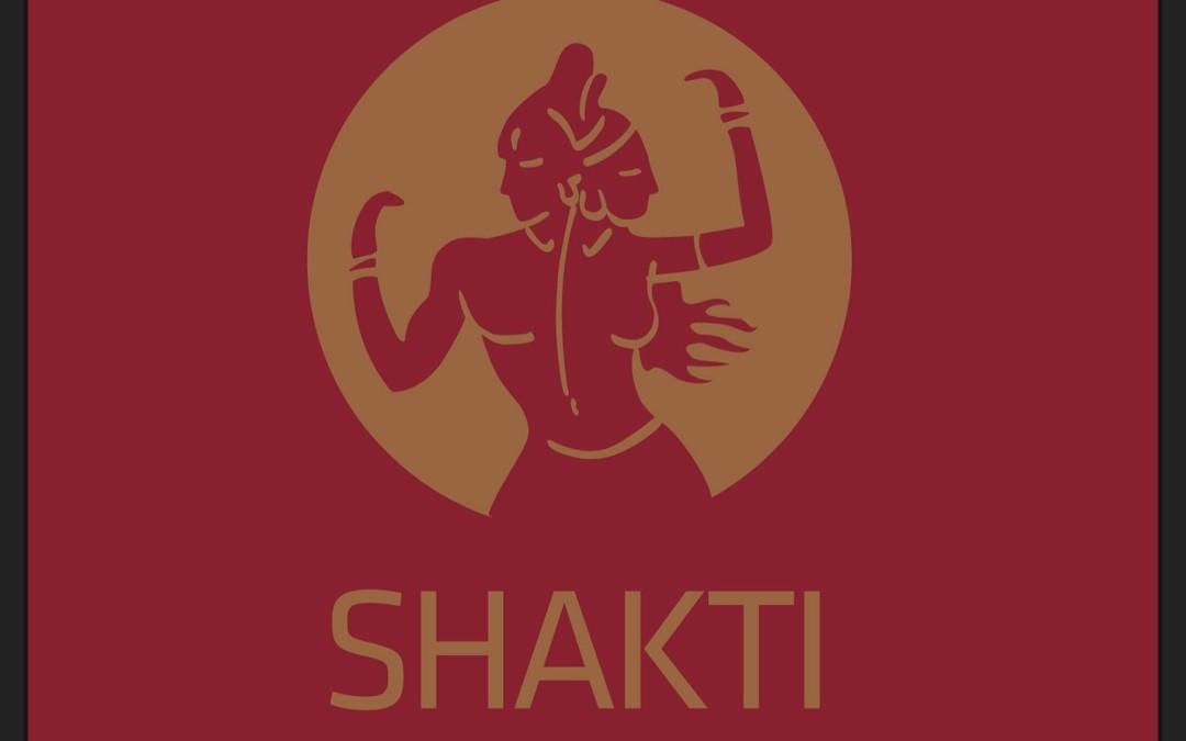 Shakti: Uma clínica maravilhosa de medicinas alternativas no Porto