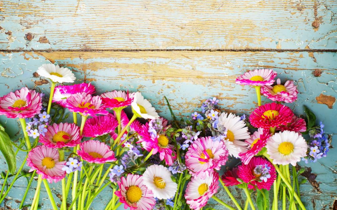 Porque deves mudar a tua alimentação na primavera